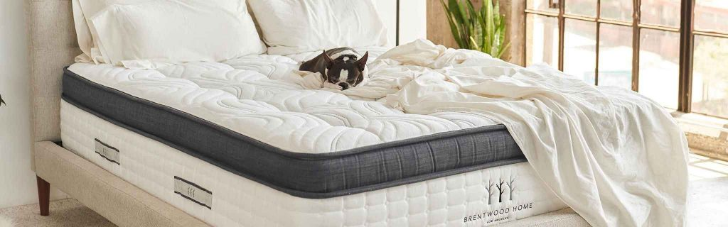 Buying Guide – How to Choose a Mattress?